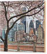 The Spring Skyline Wood Print