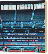 The Stands At Oriole Park Wood Print