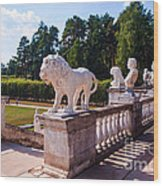 The Statues Of Archangelskoe Estate. Russia Wood Print