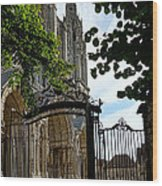 The Steeple And The Gate Wood Print