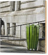 The Story Of Him Waiting And A Green Trashcan Wood Print