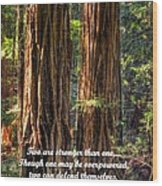 The Strength Of Two - From Ecclesiastes 4.9 And 4.12 - Muir Woods National Monument Wood Print