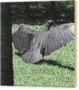 The Strut Wood Print