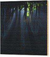 The Sun Always Rises... Wood Print