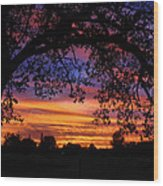 The Sun Sets For Mike Wood Print