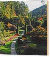 The Sunken Garden Wood Print