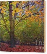 The Sunoka Tree Wood Print