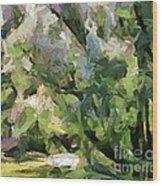 The Swamp - Wetlands Wood Print