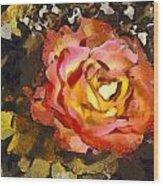 The Sweetest Rose 1 Wood Print