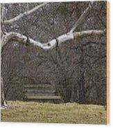 The Swing Wood Print