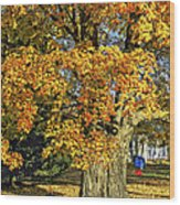 The Swinging Tree Wood Print