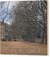 The Sycamores Wood Print