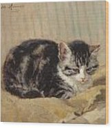 The Tabby Wood Print by Henriette Ronner-Knip