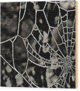 The Tangled Web Wood Print