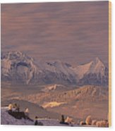The Tatra Mountains Wood Print