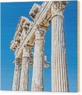 The Temple Of Apollo Wood Print