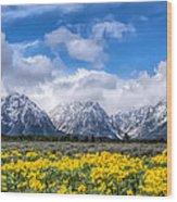 The Teton Mountain Range In The Spring Grand Teton National Park Wood Print