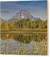 The Tetons And Fall Colors Wood Print