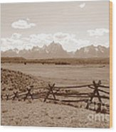 The Tetons In Sepia Wood Print