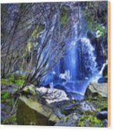The Thawing Falls Wood Print