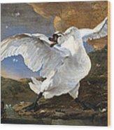 The Threatened Swan Wood Print