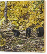 The Three Bears Wood Print