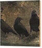 The Three Black Crows Wood Print