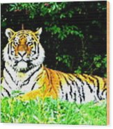 The Tiger In The Woods Wood Print