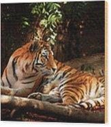 The Tigress  Wood Print