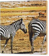 The Tired Zebras Wood Print