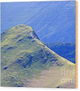 The Top Of Catbells In The Lake District Wood Print