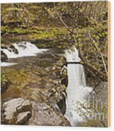 The Top Of The Falls Wood Print