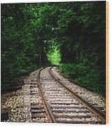 The Tracks Through The Woods Wood Print