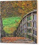 The Trail Arches On Wood Print