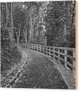 The Trail Wood Print