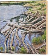The Trail Series - Beaver Pond Wood Print