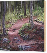 The Trail Series - Sunlight In The Wood Wood Print