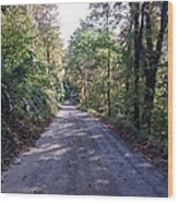 The Traveler's Road Wood Print