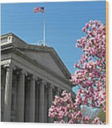 The Treasury Building Wood Print