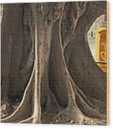 The Tree And The Post Box Wood Print