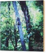 The Tree Spirits Wood Print