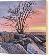 The Tree V Wood Print
