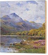 The Trossachs Ben  Wood Print