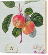 The Trumpington Apple Wood Print by William Hooker