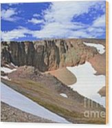 The Tundra Wood Print