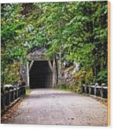 The Tunnel On The Scenic Route Wood Print