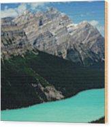 The Turquoise Colored Peyto Lake Wood Print