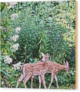 The Twins On The Move Wood Print