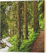 The Twisting Path Winding Through Paradise  Wood Print