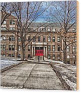 The University Of Wisconsin Education Building Wood Print